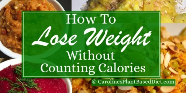 how to lose weight without strict diet
