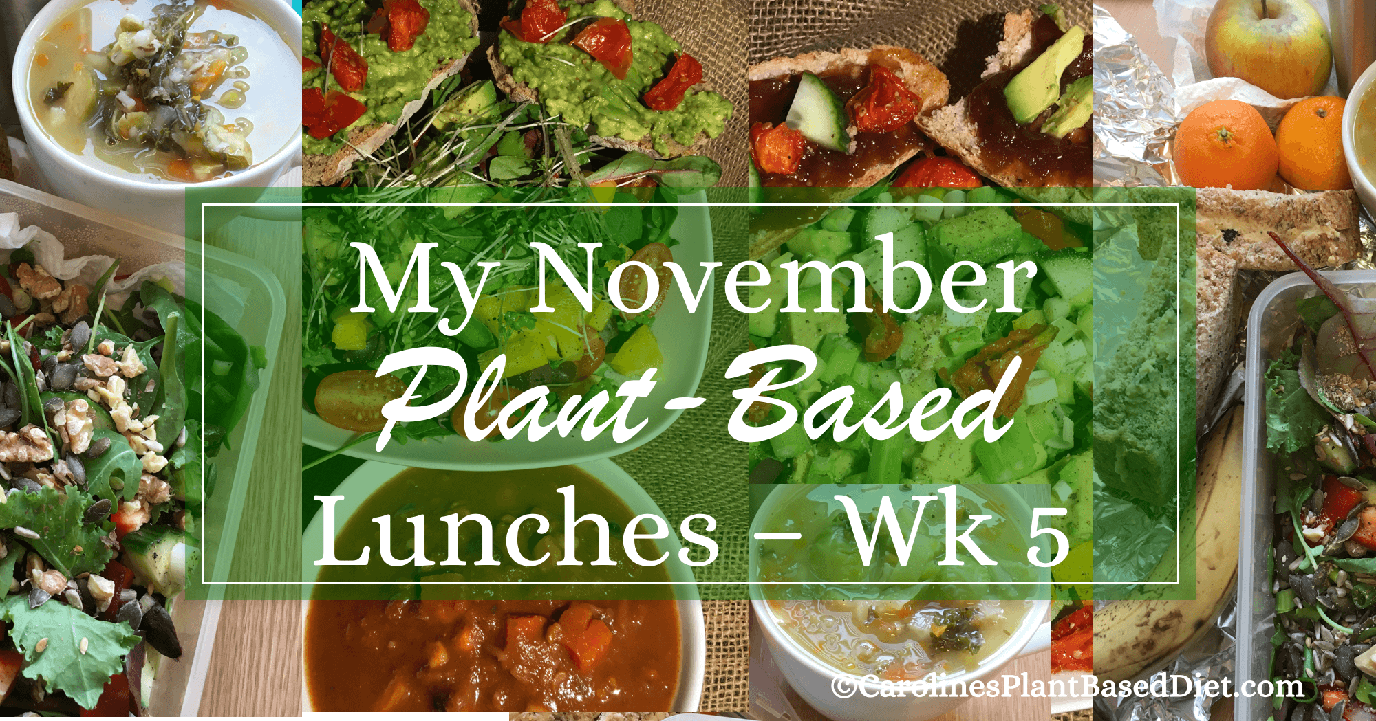 my-november-plant-based-lunches-wk5
