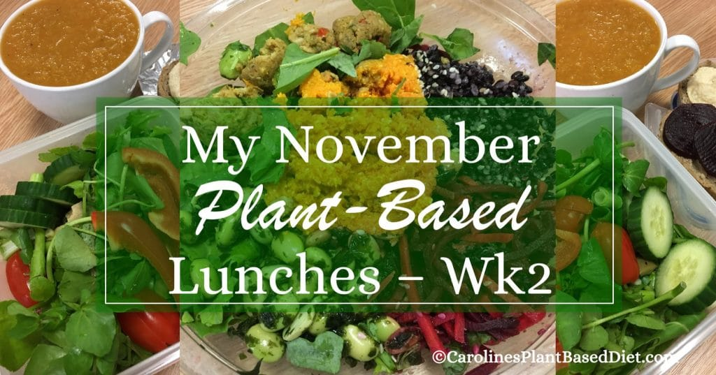 My November Plant-Based Lunches 121117