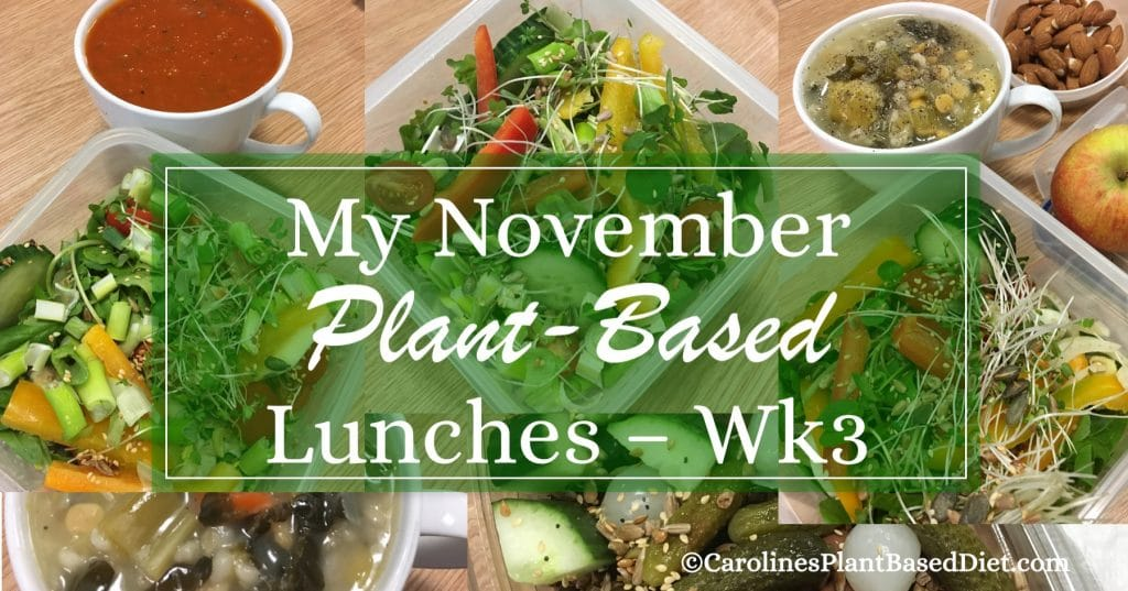 My November Plant-Based Lunches 171117